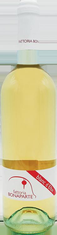 Vino Bianco dell'Elba